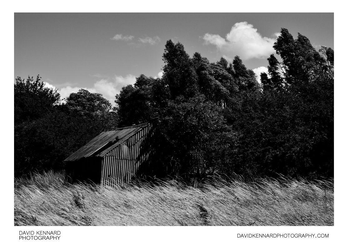 Old steel shack in hay field
