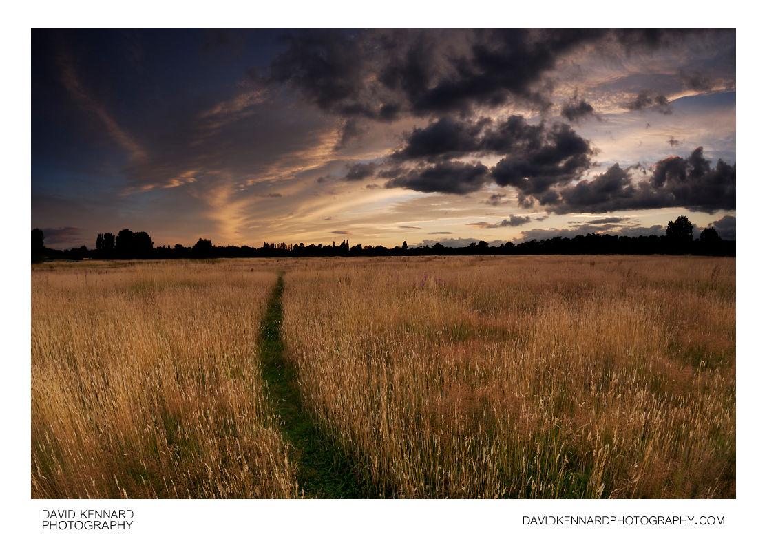 Harborough Hay field at twilight