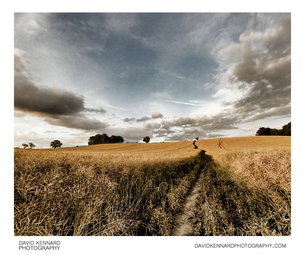 Path over Lubenham hill