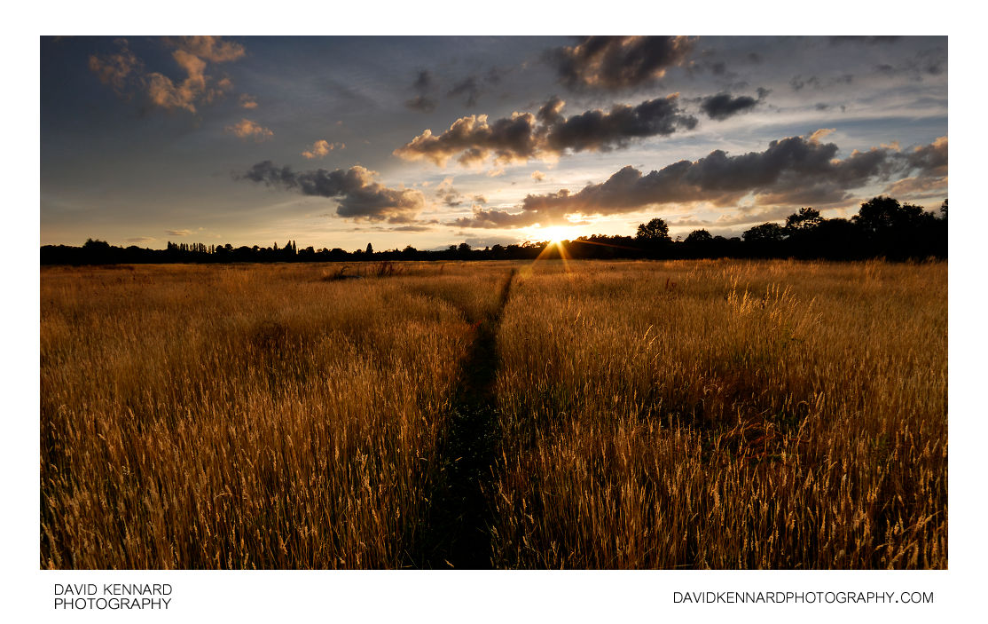 Sunset over Harborough hay field