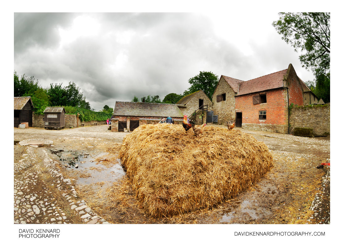 Straw Manure