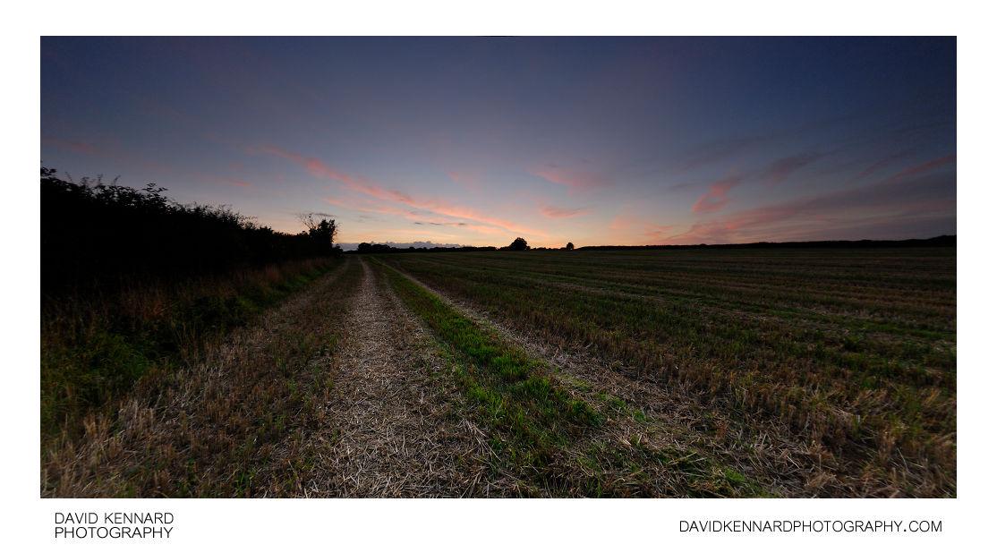 Harvested field at twilight