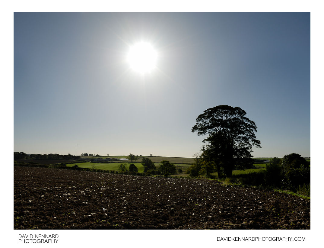 Sun and ploughed field, Scalford