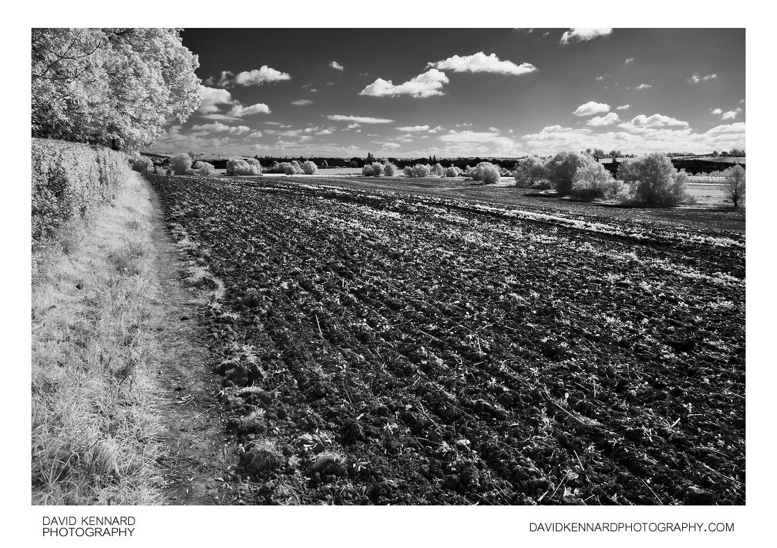 Ploughed field in Infrared B&W