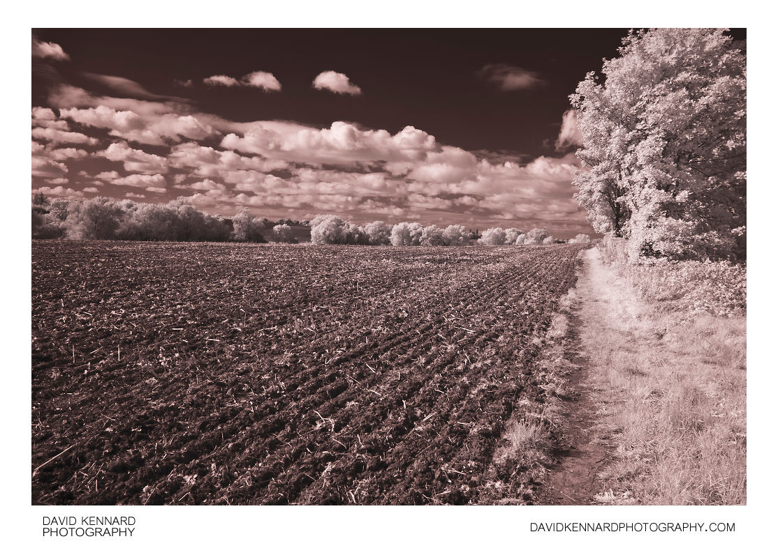 Ploughed field in Infrared