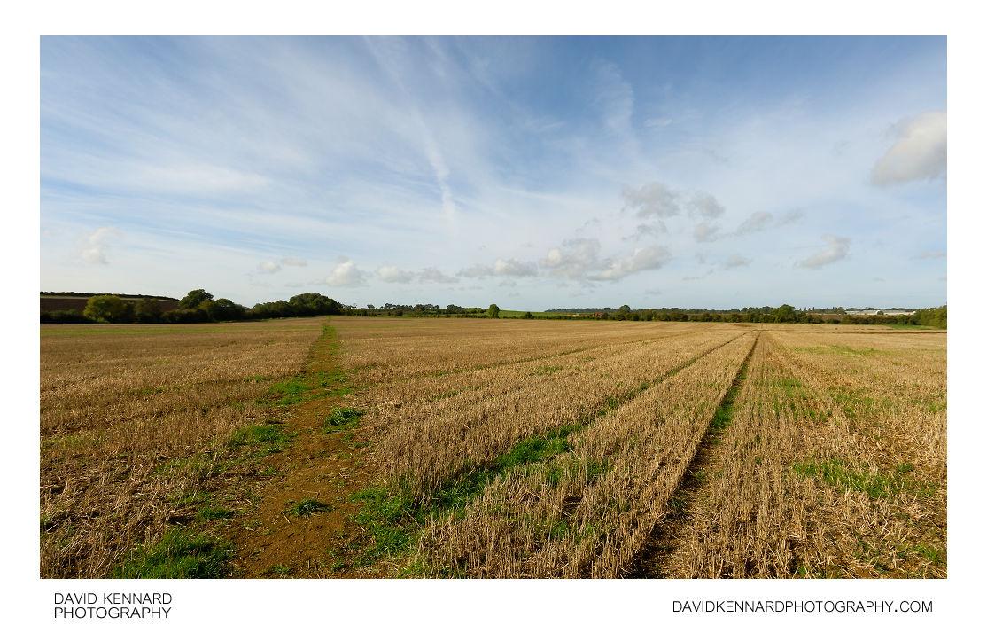 Path across harvested field near Harborough
