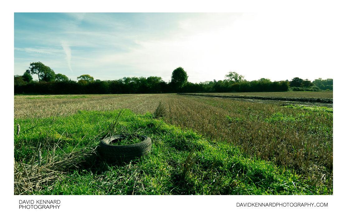 Old tyre in field
