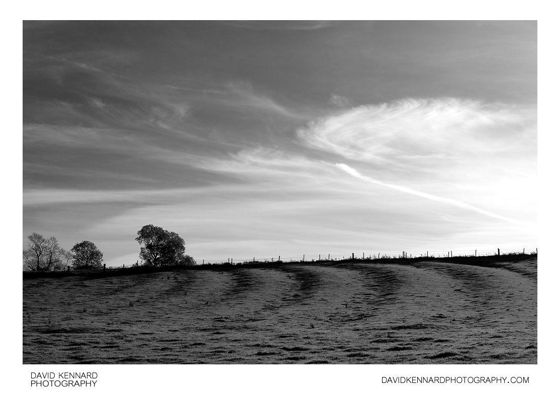 Ridge and Furrow, East Farndon
