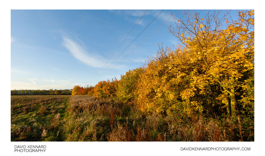 Farndon Fields in Autumn
