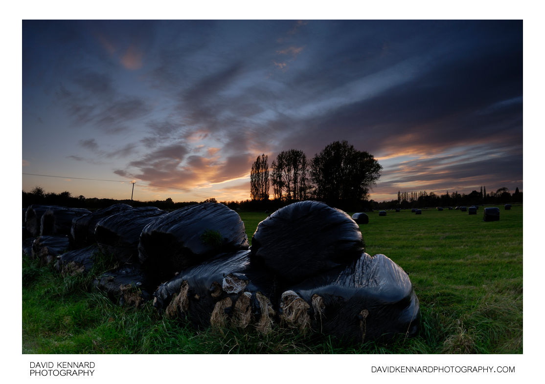 Black plastic wrapped silage bales at twilight