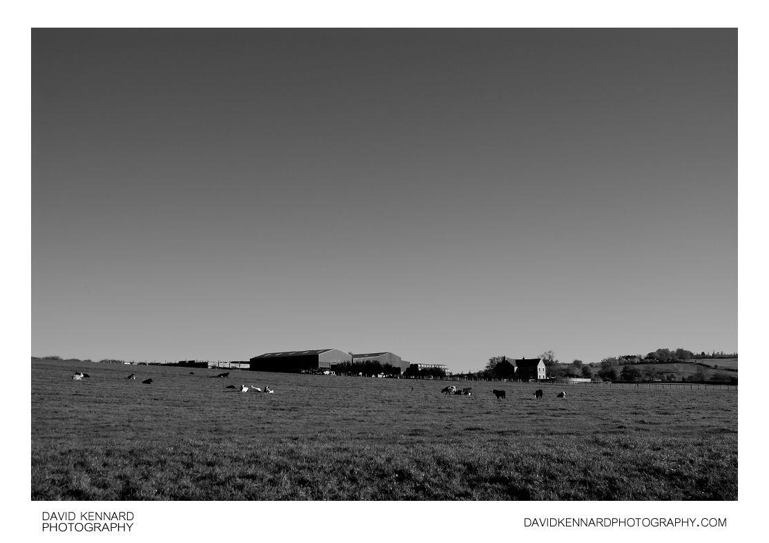 Field and farm near Medbourne