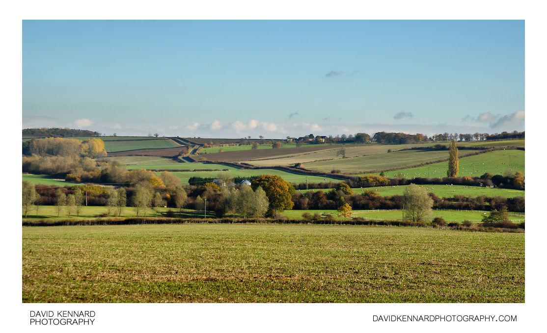 Countryside near Medbourne