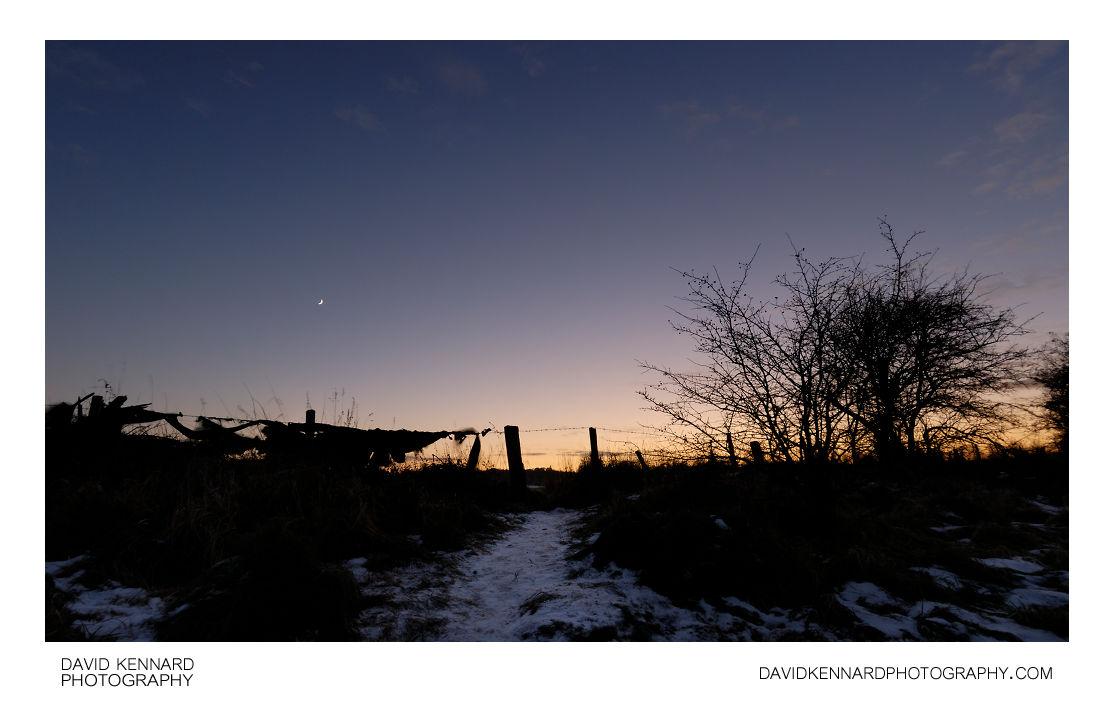 Snowy track at twilight