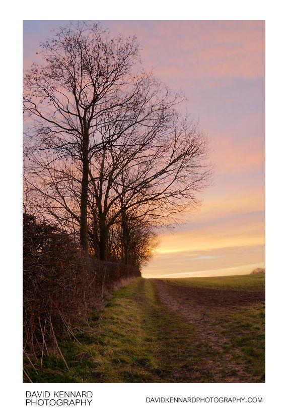 Sunrise over field, Market Harborough