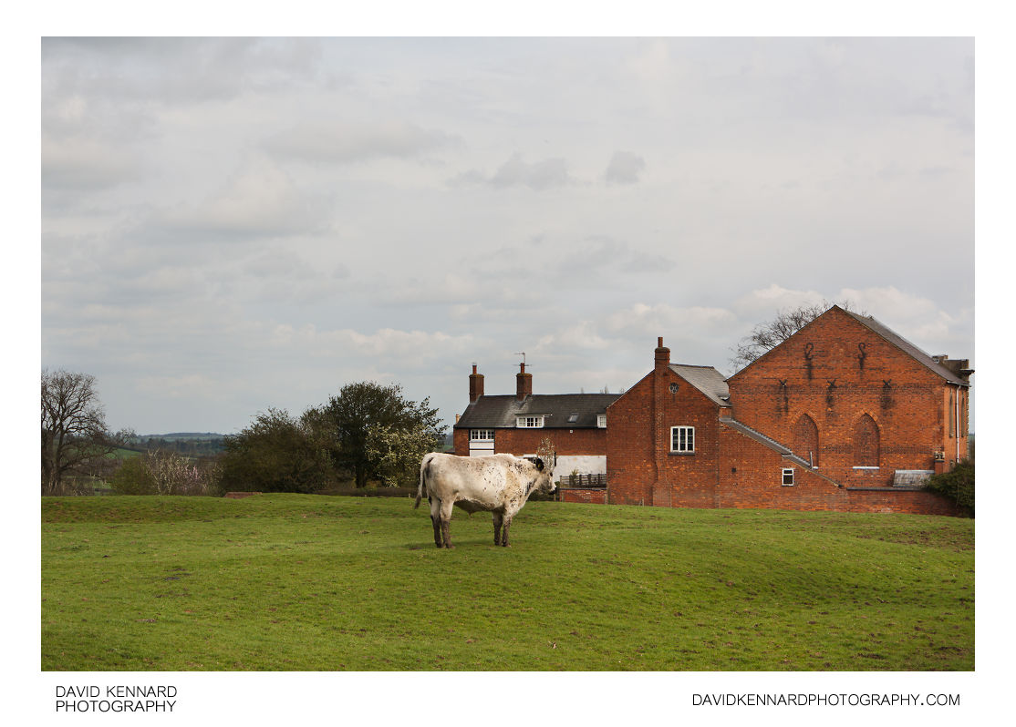 Steer and Clipston Baptist Chapel