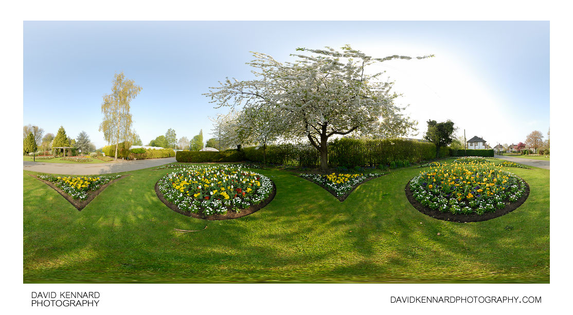 Flowerbeds and Blossoming Tree at Welland Park