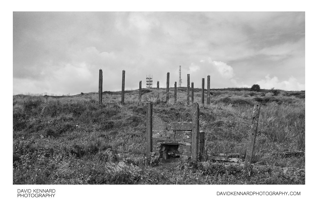 Concrete poles on Brown Clee Hill