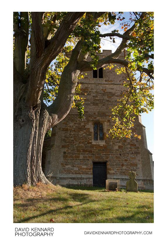 Maple tree and All Saints Church, Lubenham
