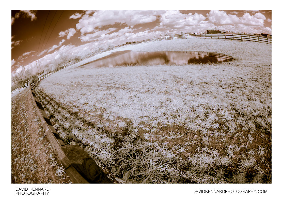Farndon Fields pond false colour infrared