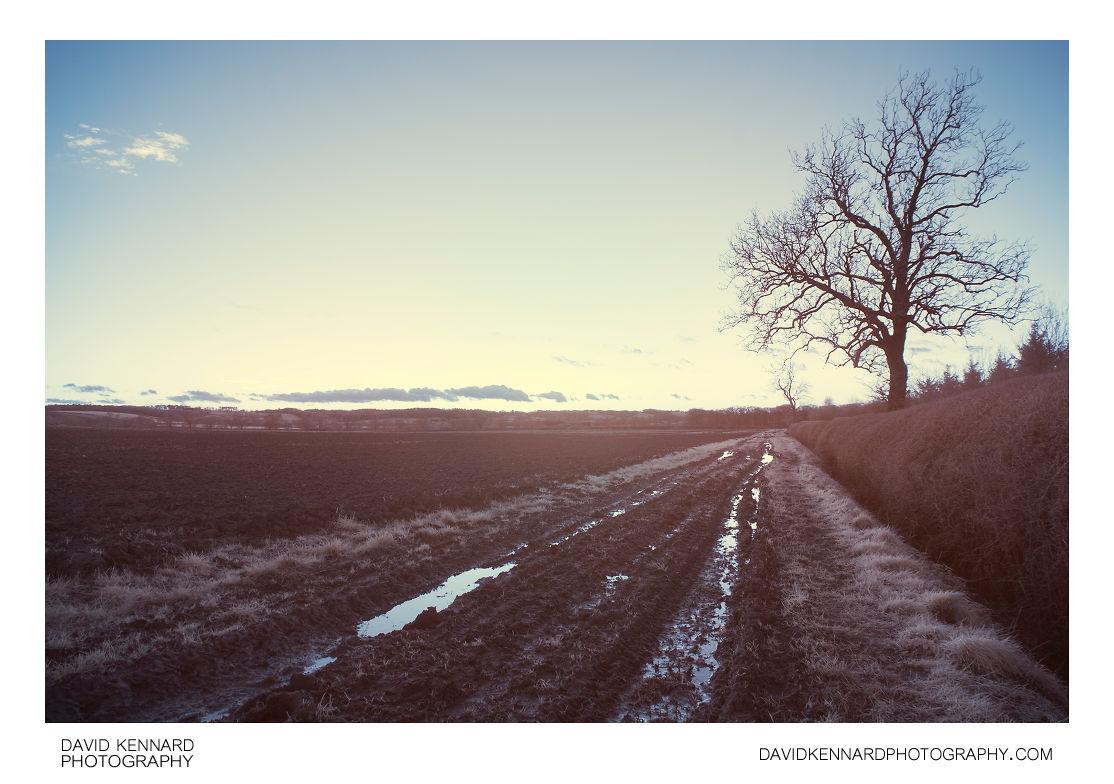Muddy farm track in IR