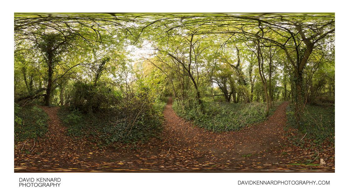 Old railway line between Harborough & Lubenham