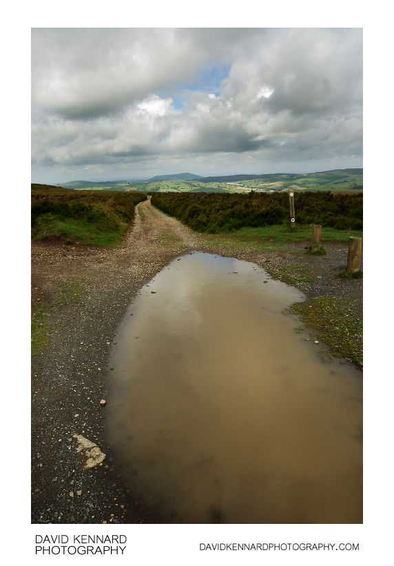 Large puddle on the Long Mynd