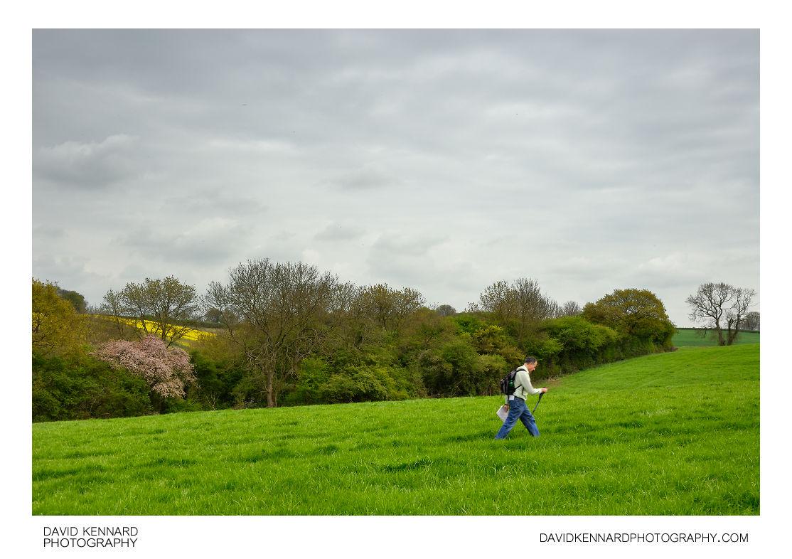 Walking across green hay field