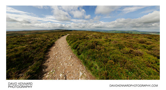 Path and heather on the Long Mynd, Shropshire