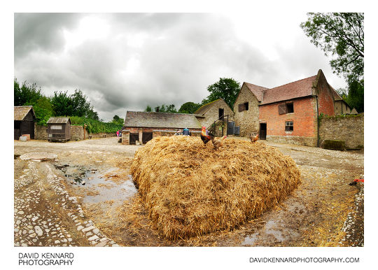 Pile of Straw Manure in the farmyard at Acton Scott Historic Working Farm