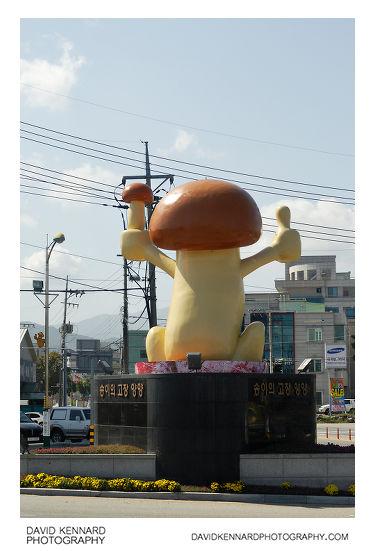 Yangyang Mushroom Mascot