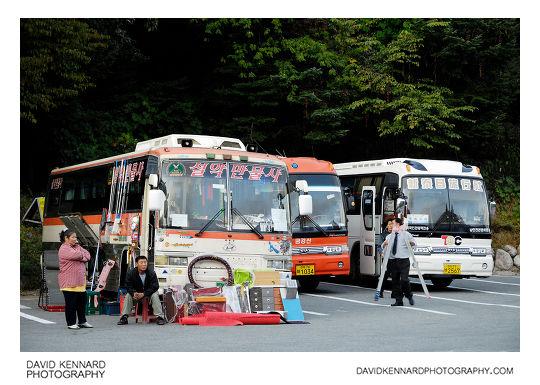 Sorak tour buses