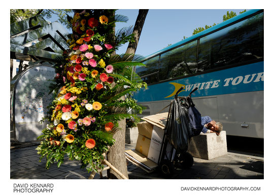 Flowers and sleeping man, Insadong
