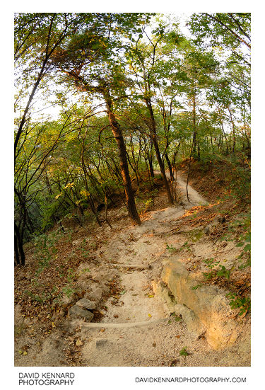 Path down Buramsan