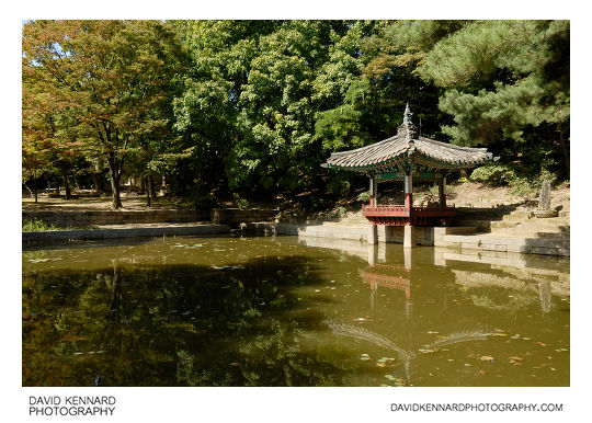 Aeryeon lake and pavilion, Changdeokgung