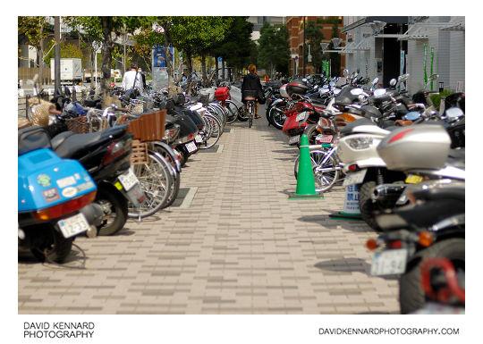 Lines of bikes in Naniwa-ku