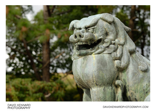 Lion guardian statue at Hokoku Shrine, Osaka
