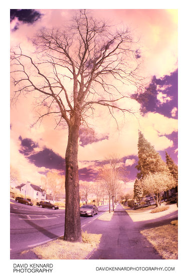 Lubenham Hill road in infrared
