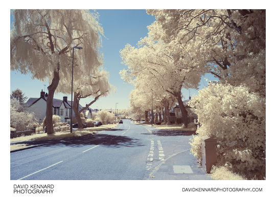 Great Bowden Road false colour infrared