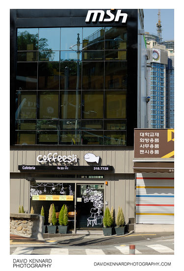 Coffeesh 커피쉬 Coffee Shop