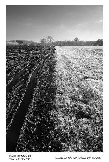 Ploughed and grass fields