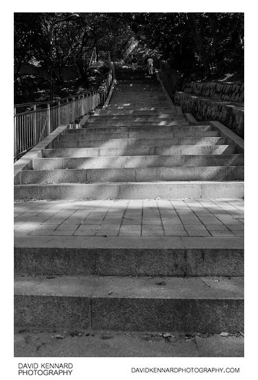 Steps up Namsan (남산)