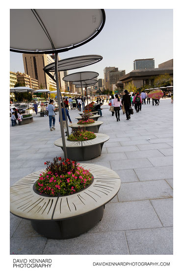 Flowerbed seats on Gwanghwamun Plaza