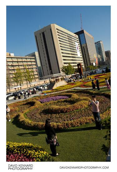Gwanghwamun Plaza Flower Carpet