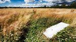 Hay field between Lubenham and Harborough