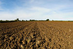 Ploughed field near Harborough