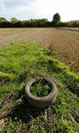 Old tyre in field