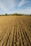 Ploughed field near Great Bowden