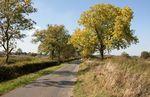 Marston Trussell Road, East Farndon