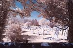 Great Bowden Cemetery in IR