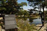 Hyangwonji Pond 향원지
